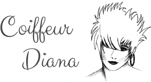 Coiffeur Diana Logo